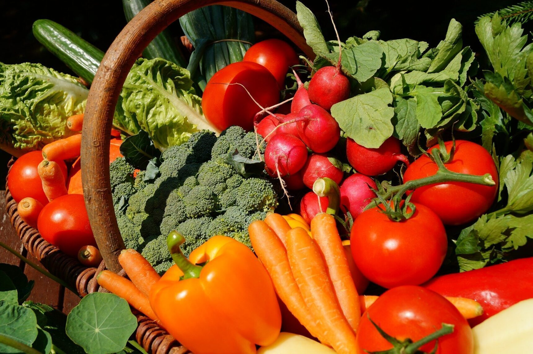 https://www.proinfoandadvice.com/wp-content/uploads/2021/02/vegetables-3386212_1920-1-e1619618138562.jpg